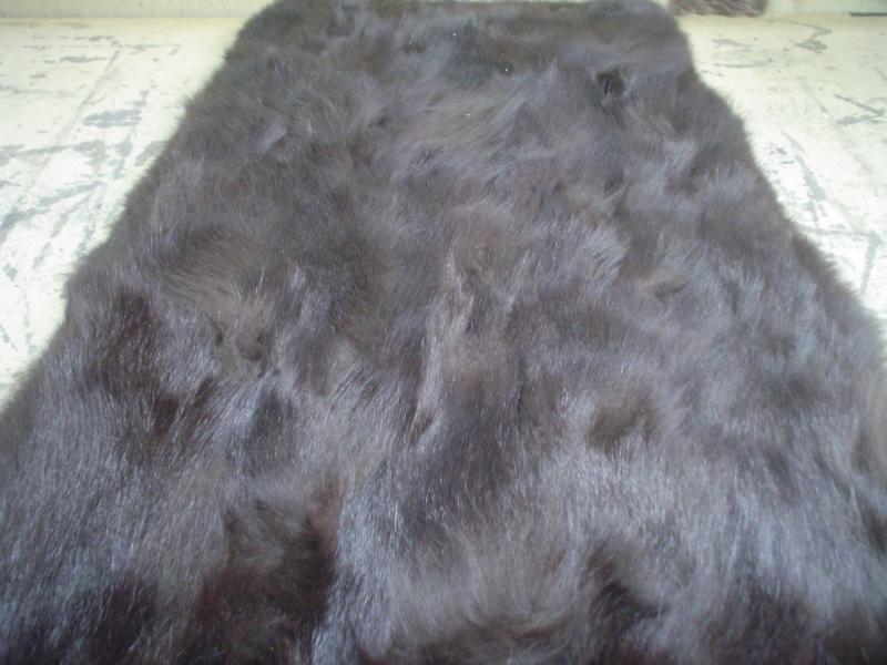 Dyed Brown Fox